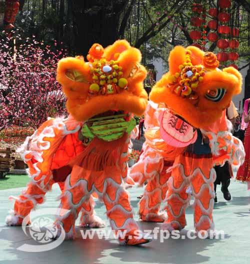 五一 中国功夫节 -深圳市民俗摄影学会欢迎您!